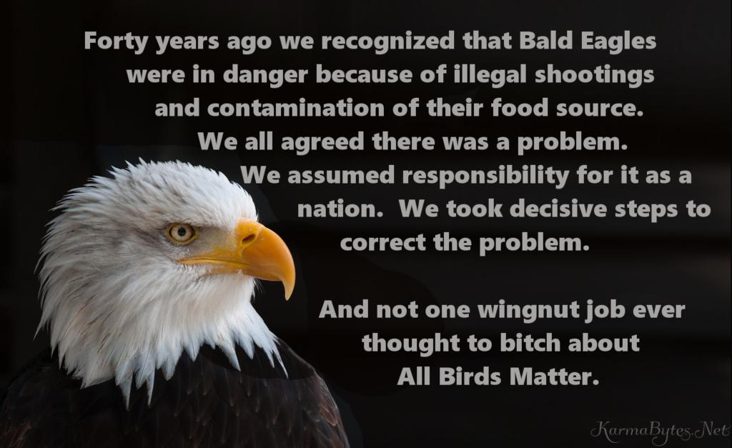 All Birds Matter